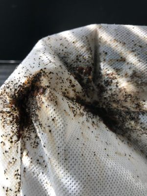 A bed bug infested mattress and the fecal matter they leave behind