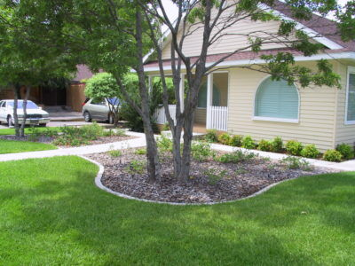 A beautiful lawn and flower bed in Carlsbad that has had a weed spray treatment and is totally weed free.