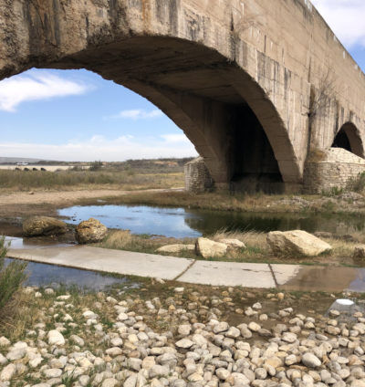 The Carlsbad Flumes area has a lot of stagnant pools perfect for mosquito breeding grounds.