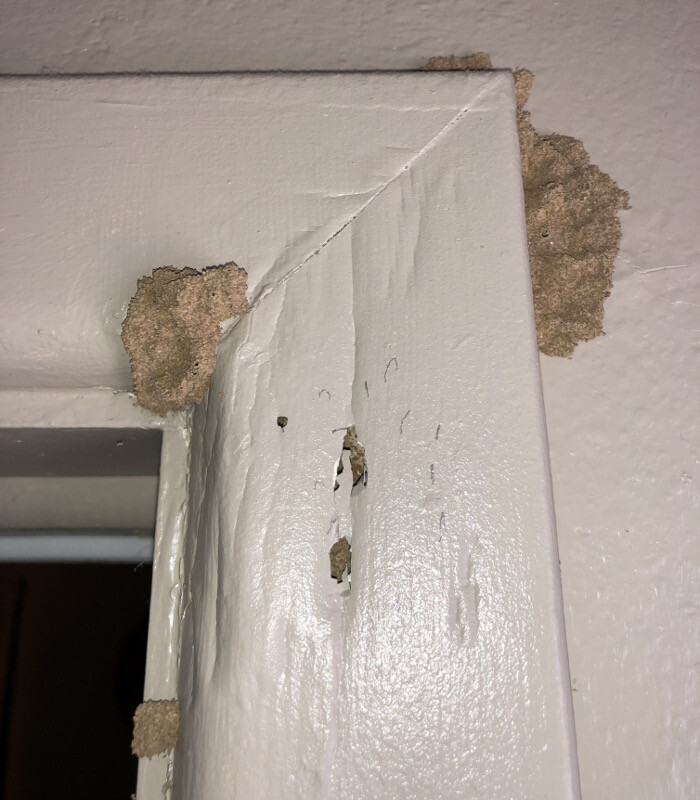 Termite mud tubes found on the interior wood door trim of a Carlsbad home.
